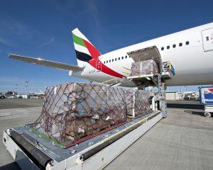 vận chuyển hàng hóa bằng đường hàng không 2