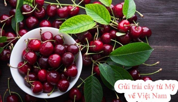 Cách gửi trái cây từ Mỹ về Việt Nam